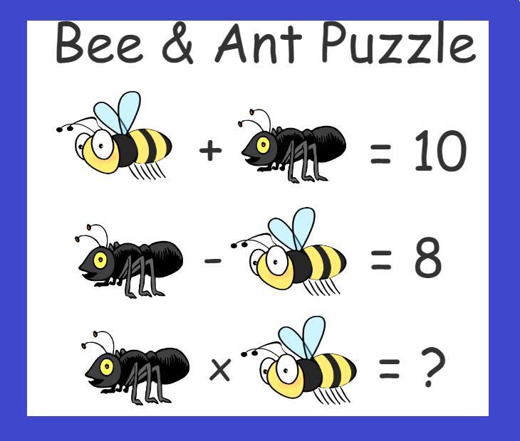 Ant riddles 44