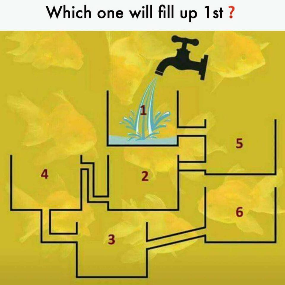 Which One Will Fill Up First Confusing Brain Teasers